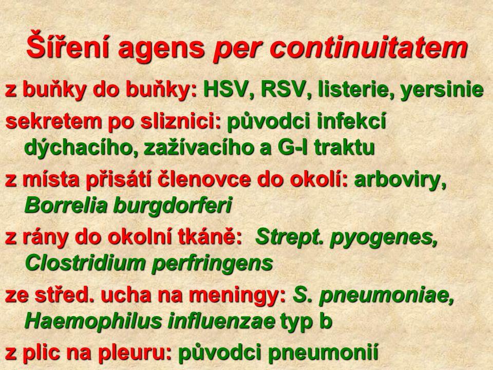 Šíření agens per continuitatem z buňky do buňky: HSV, RSV, listerie, yersinie sekretem po sliznici: původci infekcí dýchacího, zažívacího a G-I traktu z místa přisátí členovce do okolí: arboviry, Borrelia burgdorferi z rány do okolní tkáně: Strept.