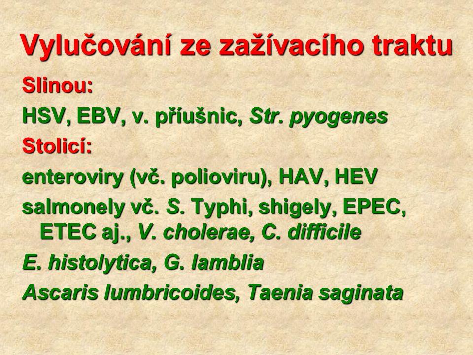 Vylučování ze zažívacího traktu Slinou: HSV, EBV, v. příušnic, Str. pyogenes Stolicí: enteroviry (vč. polioviru), HAV, HEV salmonely vč. S. Typhi, shi