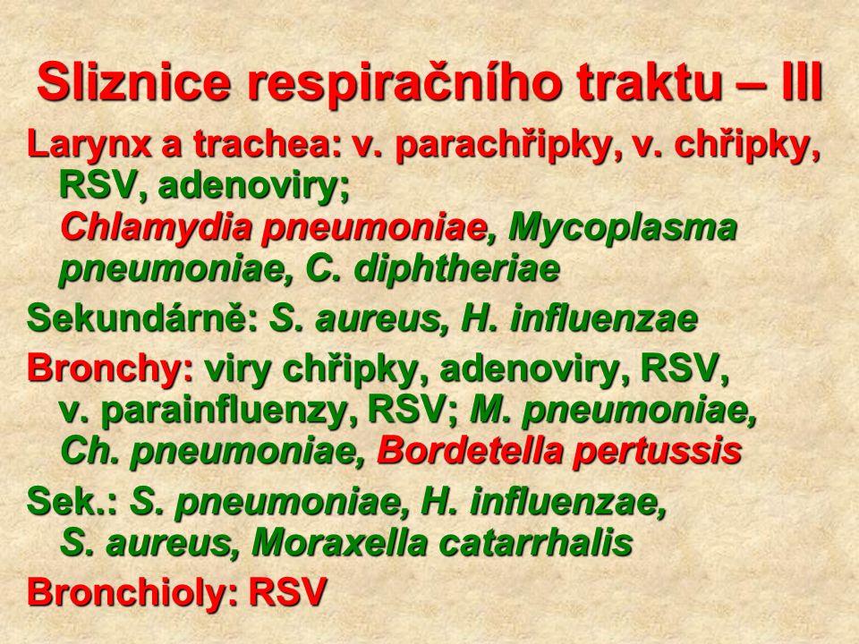 Sliznice respiračního traktu – III Larynx a trachea: v. parachřipky, v. chřipky, RSV, adenoviry; Chlamydia pneumoniae, Mycoplasma pneumoniae, C. dipht