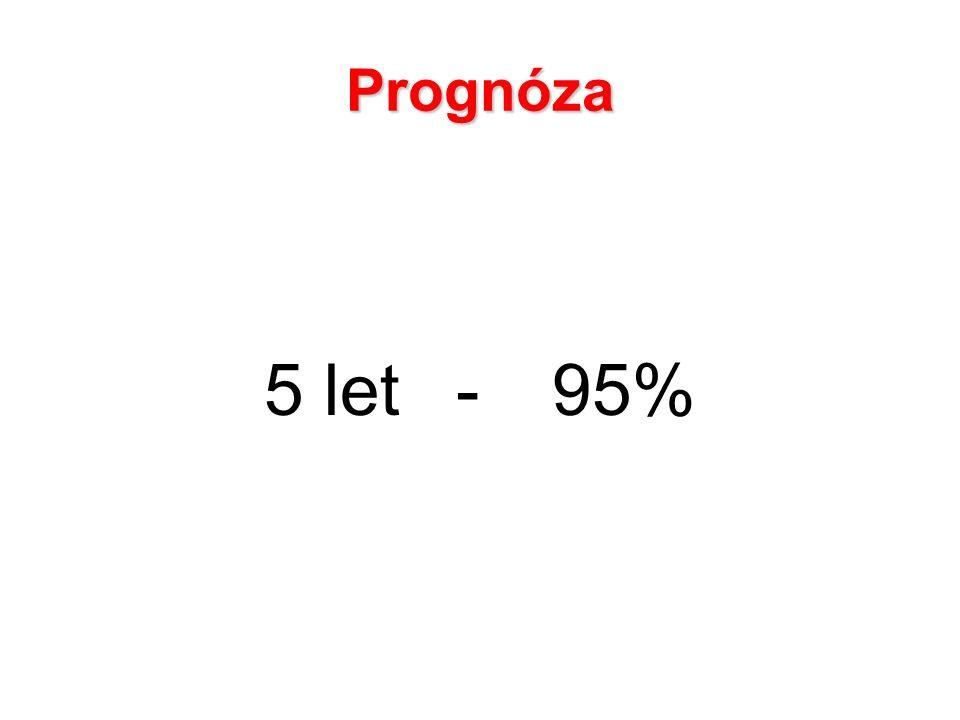 Prognóza 5 let-95%