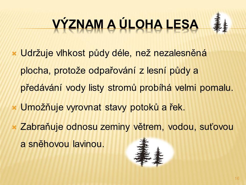  Udržuje vlhkost půdy déle, než nezalesněná plocha, protože odpařování z lesní půdy a předávání vody listy stromů probíhá velmi pomalu.