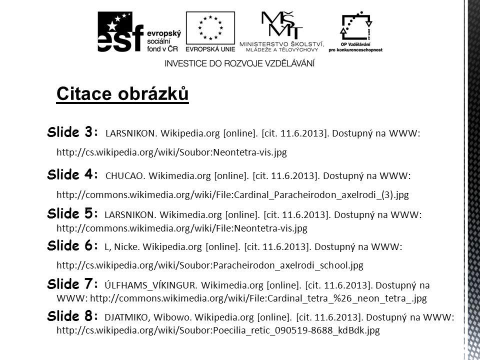 Slide 3: LARSNIKON. Wikipedia.org [online]. [cit. 11.6.2013]. Dostupný na WWW: http://cs.wikipedia.org/wiki/Soubor:Neontetra-vis.jpg Slide 4: CHUCAO.
