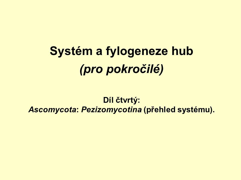 Systém a fylogeneze hub (pro pokročilé) Díl čtvrtý: Ascomycota: Pezizomycotina (přehled systému).