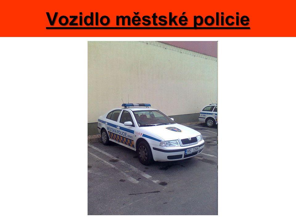 Vozidlo městské policie