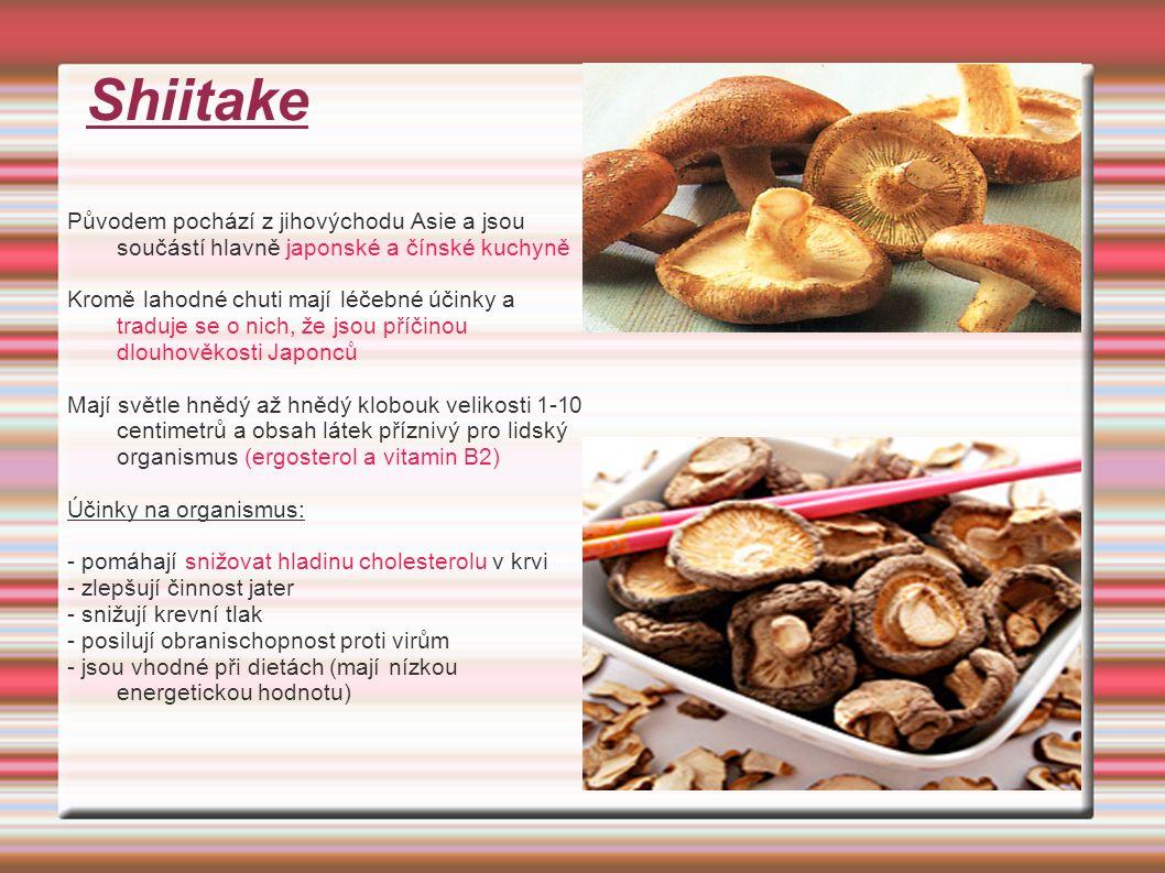 Shiitake Původem pochází z jihovýchodu Asie a jsou součástí hlavně japonské a čínské kuchyně Kromě lahodné chuti mají léčebné účinky a traduje se o nich, že jsou příčinou dlouhověkosti Japonců Mají světle hnědý až hnědý klobouk velikosti 1-10 centimetrů a obsah látek příznivý pro lidský organismus (ergosterol a vitamin B2) Účinky na organismus: - pomáhají snižovat hladinu cholesterolu v krvi - zlepšují činnost jater - snižují krevní tlak - posilují obranischopnost proti virům - jsou vhodné při dietách (mají nízkou energetickou hodnotu)