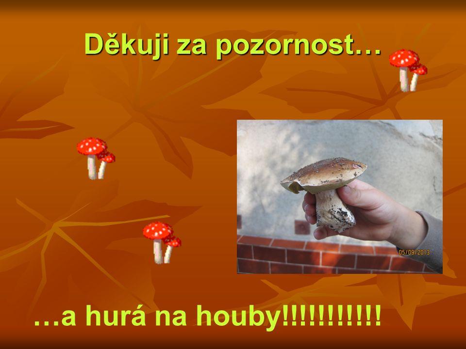 Děkuji za pozornost… …a hurá na houby!!!!!!!!!!!