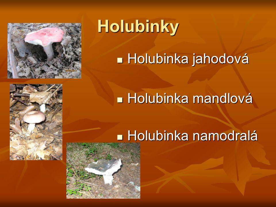 Holubinky Holubinka jahodová Holubinka jahodová Holubinka mandlová Holubinka mandlová Holubinka namodralá Holubinka namodralá