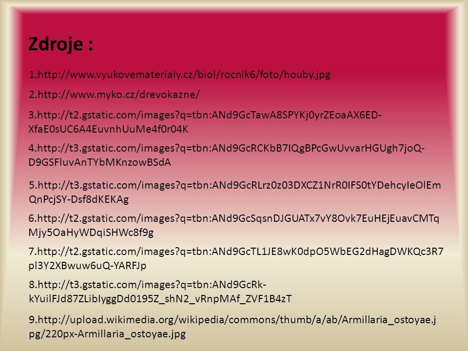 Zdroje : 2.http://www.myko.cz/drevokazne/ 1.http://www.vyukovematerialy.cz/biol/rocnik6/foto/houby.jpg 3.http://t2.gstatic.com/images q=tbn:ANd9GcTawA8SPYKj0yrZEoaAX6ED- XfaE0sUC6A4EuvnhUuMe4f0r04K 4.http://t3.gstatic.com/images q=tbn:ANd9GcRCKbB7IQgBPcGwUvvarHGUgh7joQ- D9GSFluvAnTYbMKnzowBSdA 5.http://t3.gstatic.com/images q=tbn:ANd9GcRLrz0z03DXCZ1NrR0IFS0tYDehcyIeOlEm QnPcjSY-Dsf8dKEKAg 6.http://t2.gstatic.com/images q=tbn:ANd9GcSqsnDJGUATx7vY8Ovk7EuHEjEuavCMTq Mjy5OaHyWDqiSHWc8f9g 7.http://t2.gstatic.com/images q=tbn:ANd9GcTL1JE8wK0dpO5WbEG2dHagDWKQc3R7 pl3Y2XBwuw6uQ-YARFJp 8.http://t3.gstatic.com/images q=tbn:ANd9GcRk- kYuilFJd87ZLibIyggDd0195Z_shN2_vRnpMAf_ZVF1B4zT 9.http://upload.wikimedia.org/wikipedia/commons/thumb/a/ab/Armillaria_ostoyae.j pg/220px-Armillaria_ostoyae.jpg