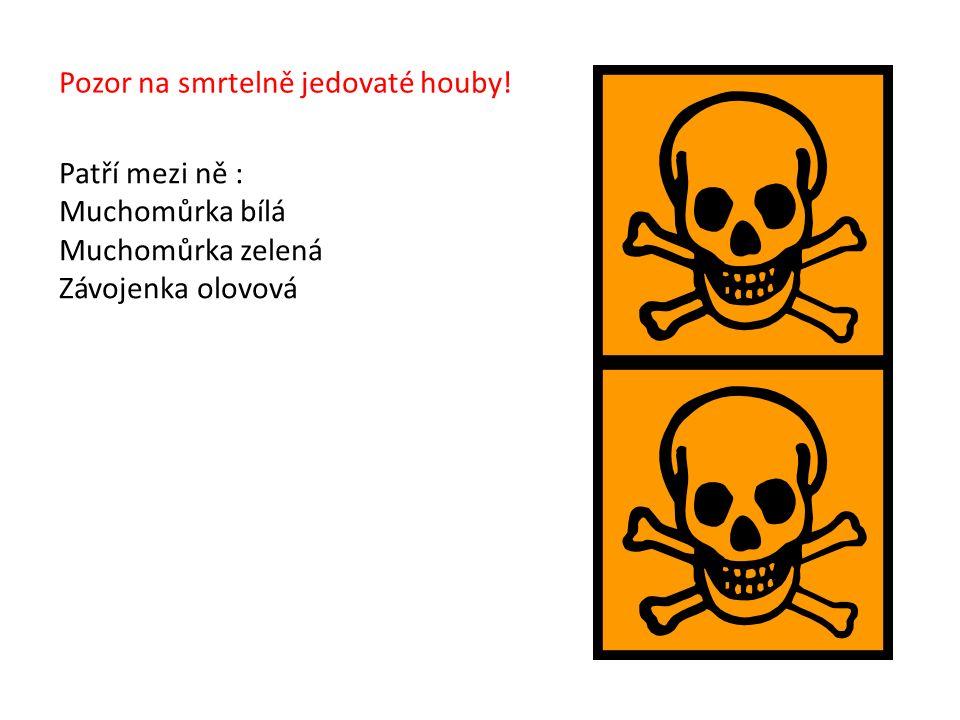 Pozor na smrtelně jedovaté houby.