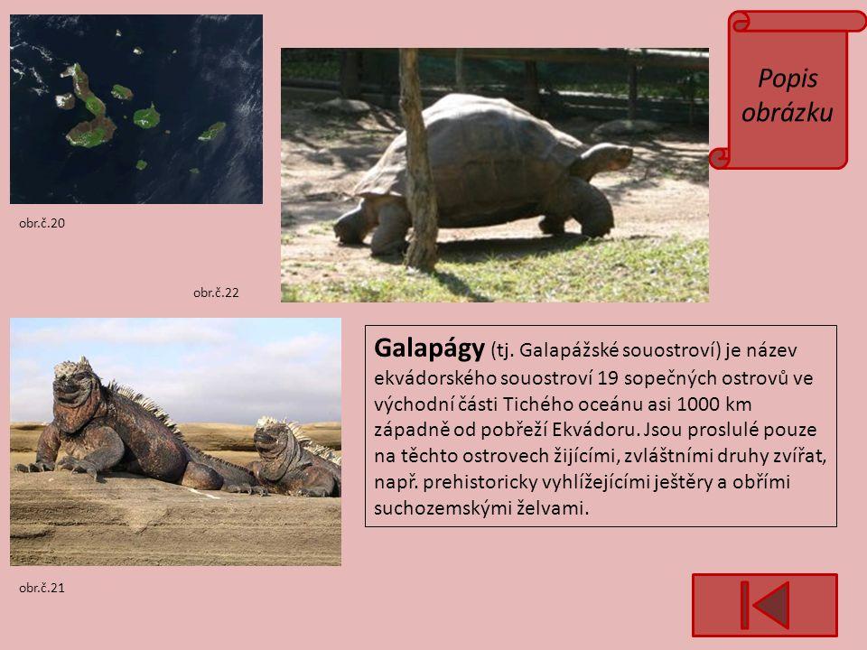 Popis obrázku obr.č.21 obr.č.20 obr.č.22 Galapágy (tj.