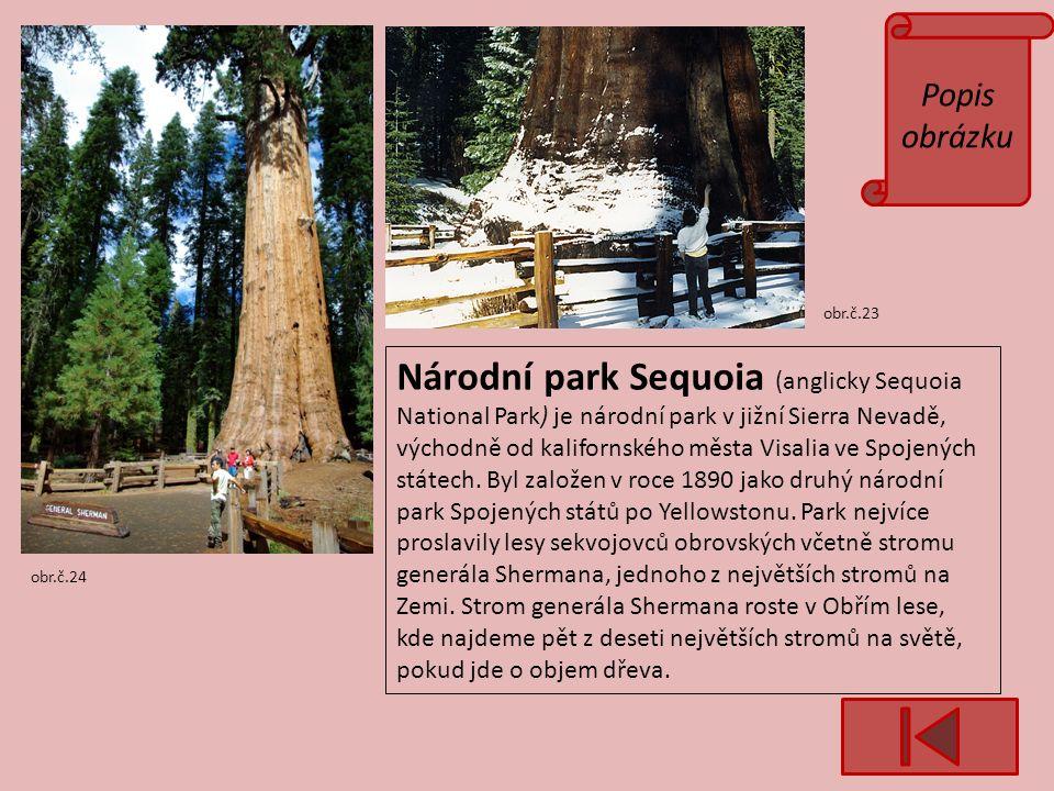 Popis obrázku obr.č.23 obr.č.24 Národní park Sequoia (anglicky Sequoia National Park) je národní park v jižní Sierra Nevadě, východně od kalifornského města Visalia ve Spojených státech.
