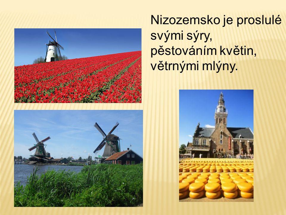 Nizozemsko je proslulé svými sýry, pěstováním květin, větrnými mlýny.
