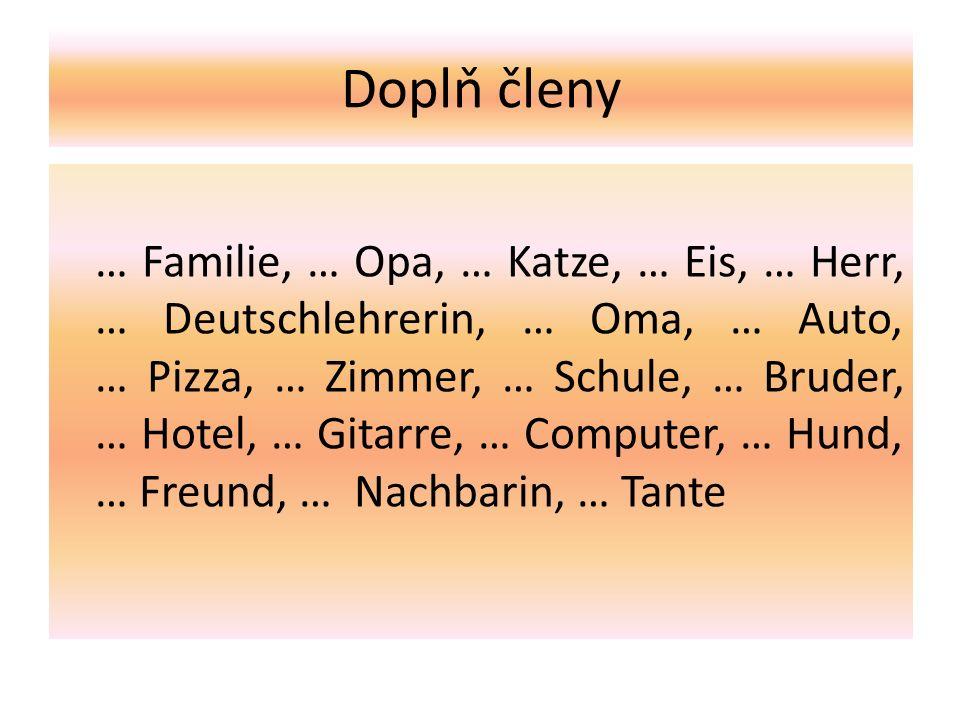 Doplň členy … Familie, … Opa, … Katze, … Eis, … Herr, … Deutschlehrerin, … Oma, … Auto, … Pizza, … Zimmer, … Schule, … Bruder, … Hotel, … Gitarre, … Computer, … Hund, … Freund, … Nachbarin, … Tante