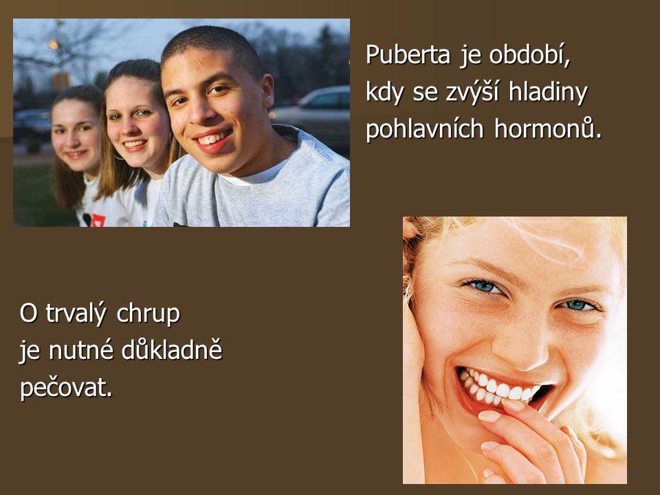 Puberta je období, Puberta je období, kdy se zvýší hladiny kdy se zvýší hladiny pohlavních hormonů. pohlavních hormonů. O trvalý chrup je nutné důklad