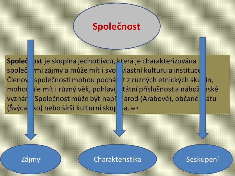 Rozdělení společností podle katolické sociální nauky Způsob integrace SpolečenstvíSeskupení Přednárodní Rod, kasta, etnická skupina, kmen, klan.
