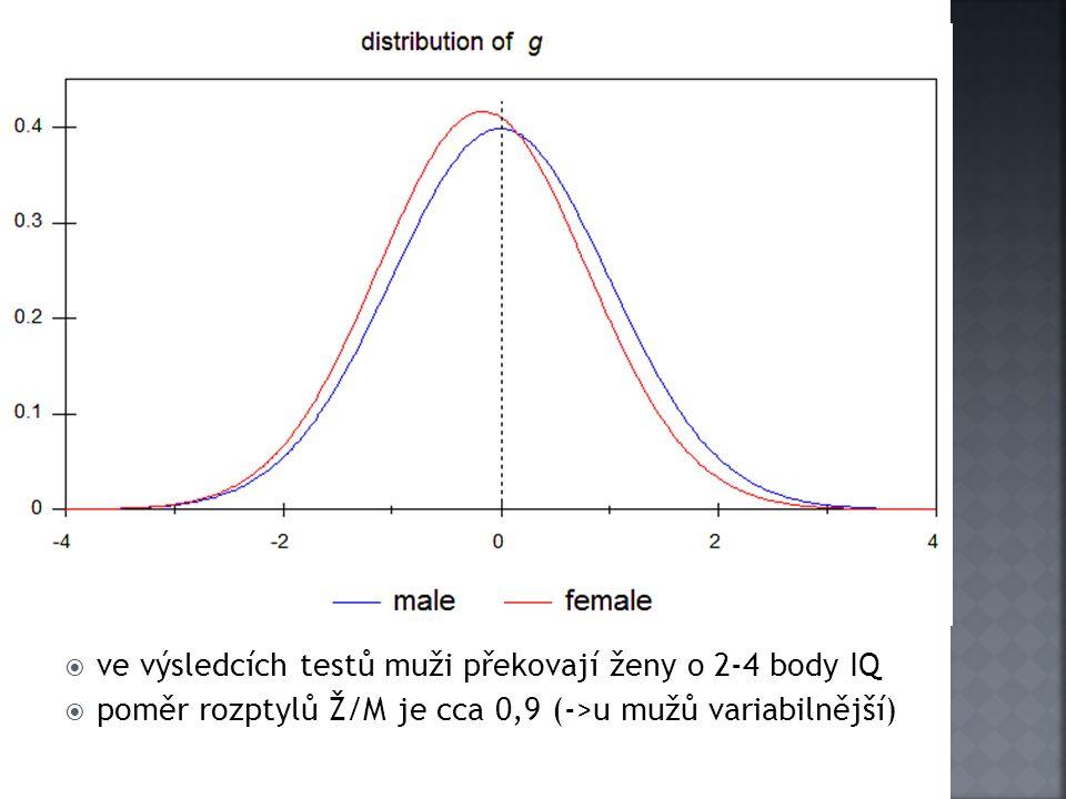  ve výsledcích testů muži překovají ženy o 2-4 body IQ  poměr rozptylů Ž/M je cca 0,9 (->u mužů variabilnější)