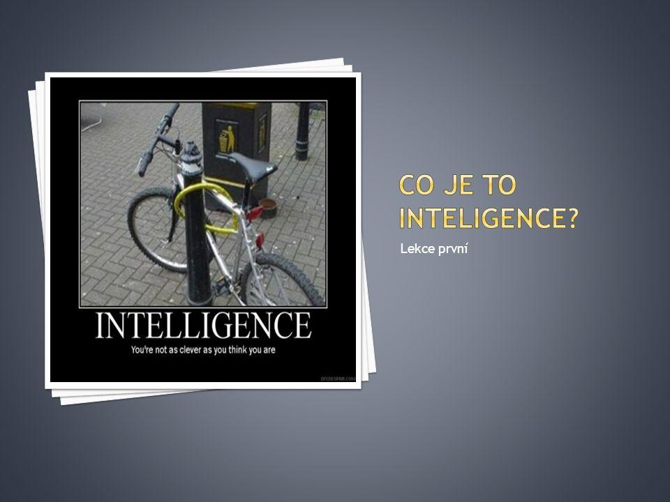 Kritika :  velká část podmínek není splněna pro žádnou z inteligencí (např.