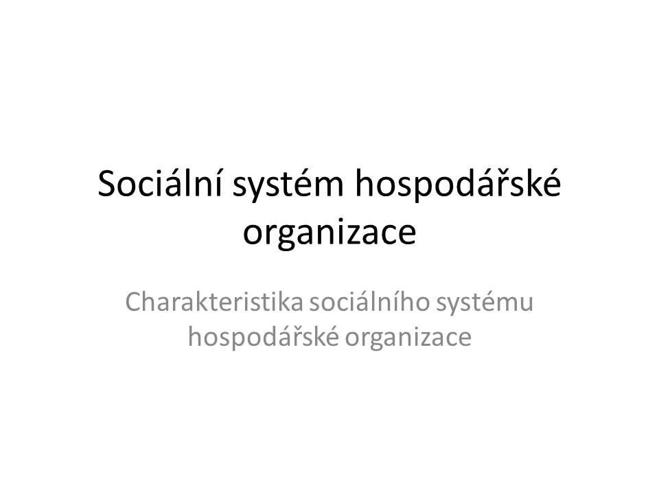 Sociální systém hospodářské organizace Charakteristika sociálního systému hospodářské organizace
