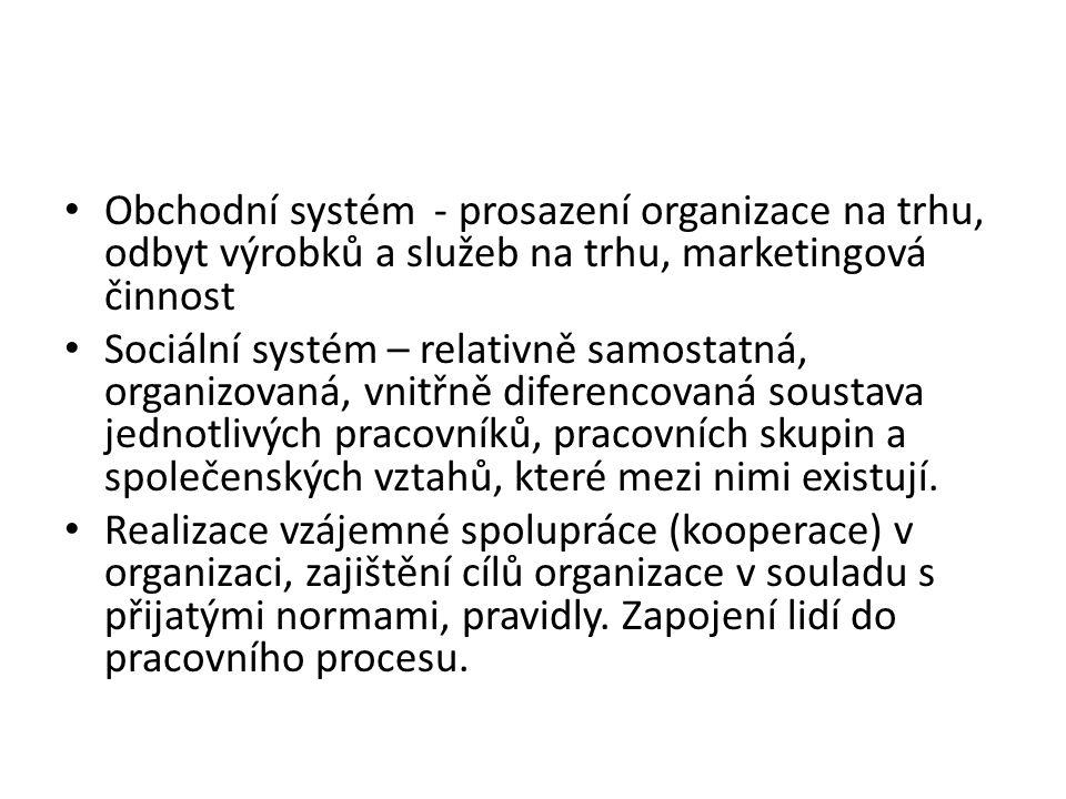 Obchodní systém - prosazení organizace na trhu, odbyt výrobků a služeb na trhu, marketingová činnost Sociální systém – relativně samostatná, organizov