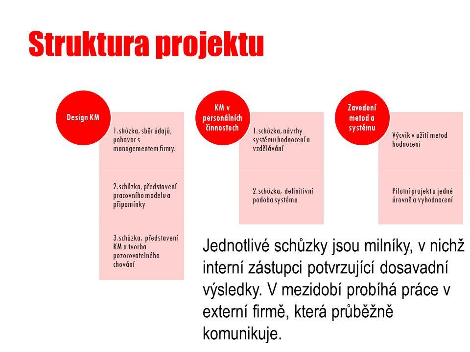Struktura projektu 1.shůzka, sběr údajů, pohovor s managementem firmy. 2.schůzka, představení pracovního modelu a připomínky 3.schůzka, představení KM