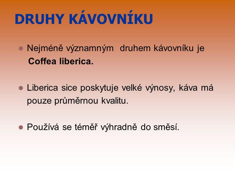 DRUHY KÁVOVNÍKU Nejméně významným druhem kávovníku je Coffea liberica.