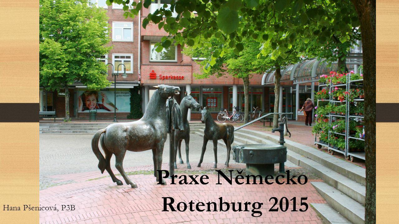 Praxe Německo Rotenburg 2015 Hana Pšenicová, P3B