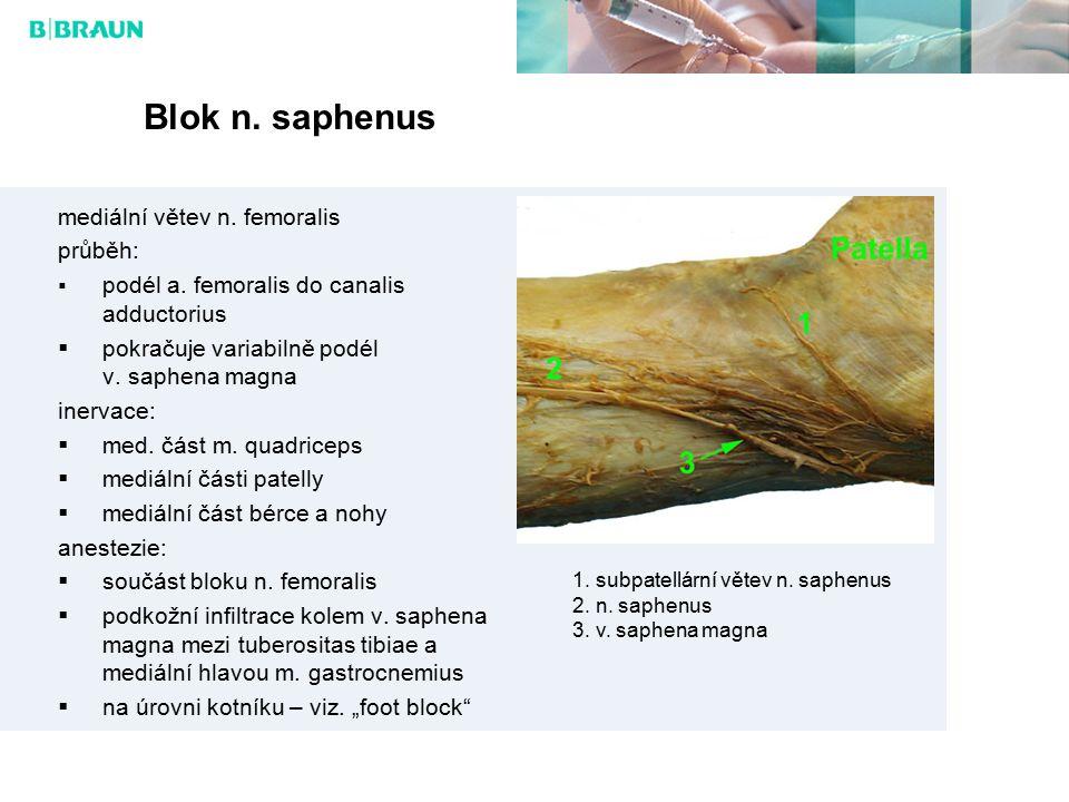 Blok n.saphenus mediální větev n. femoralis průběh:  podél a.