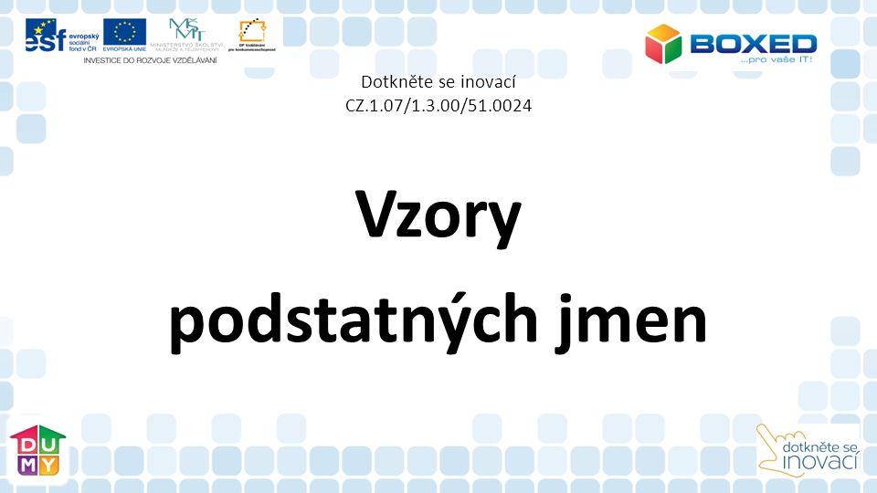 Dotkněte se inovací CZ.1.07/1.3.00/51.0024 Vzory podstatných jmen