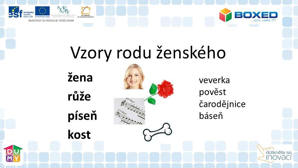 Vzory rodu ženského žena růže píseň kost veverka pověst čarodějnice báseň