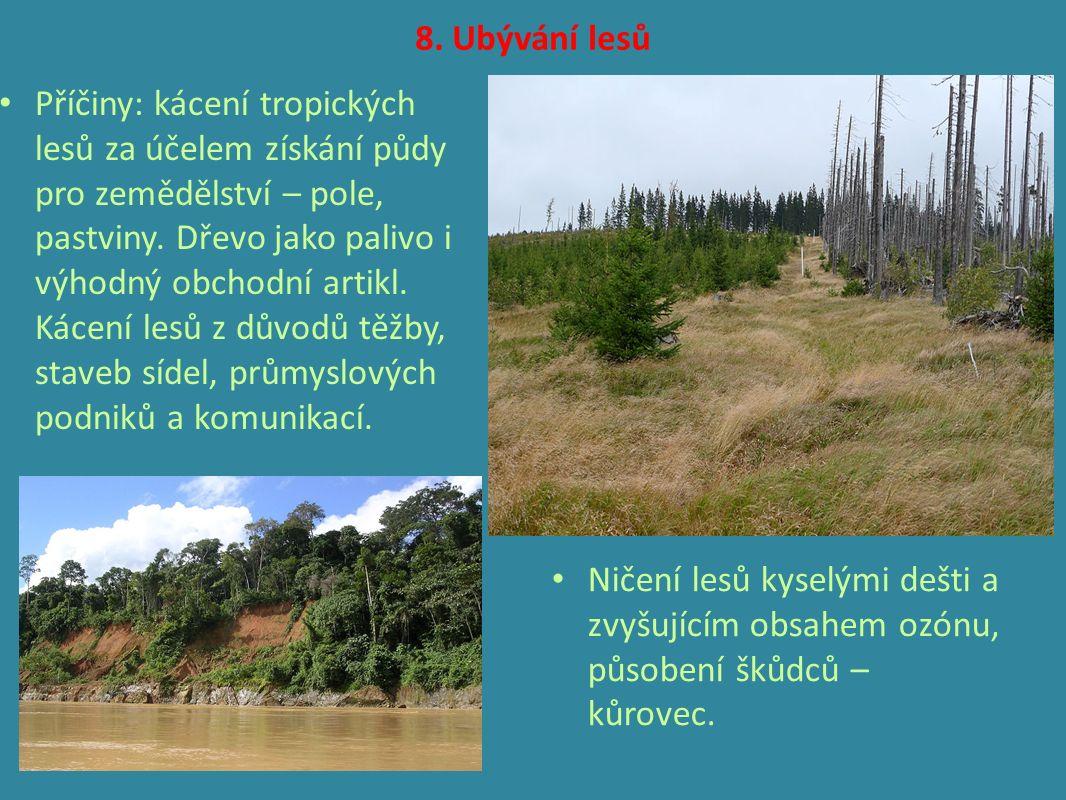 8. Ubývání lesů Příčiny: kácení tropických lesů za účelem získání půdy pro zemědělství – pole, pastviny. Dřevo jako palivo i výhodný obchodní artikl.