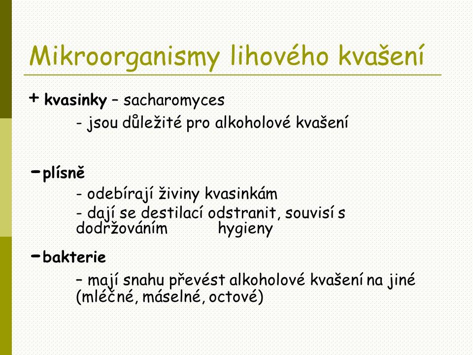 Mikroorganismy lihového kvašení + kvasinky – sacharomyces - jsou důležité pro alkoholové kvašení - plísně - odebírají živiny kvasinkám - dají se desti