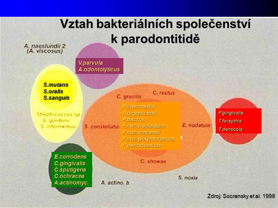 Zdroj: Socransky et al. 1998 P.gingivalisT.forsythiaT.denticola P.intermediaP.nigrescensP.microsF.nuc.nucleatumF.nuc.vincentiiF.nuc.polymorphumF.perio