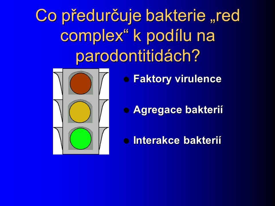 """Co předurčuje bakterie """"red complex"""" k podílu na parodontitidách? Faktory virulence Faktory virulence Agregace bakterií Agregace bakterií Interakce ba"""