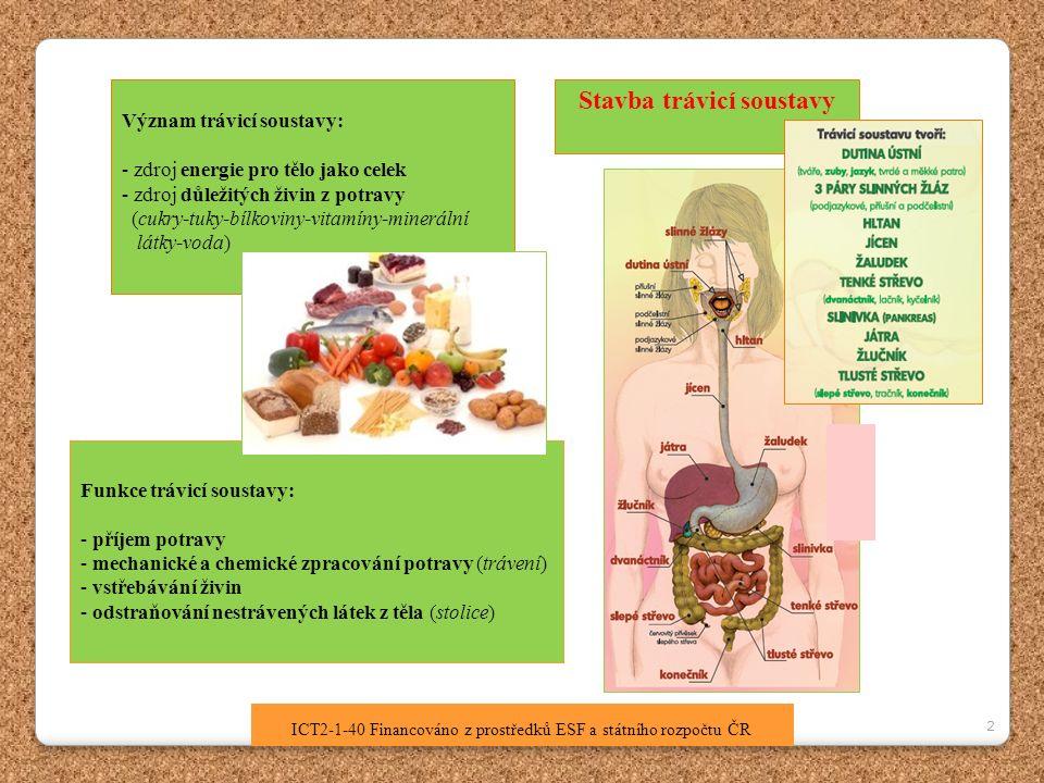 2 ICT2-1-40 Financováno z prostředků ESF a státního rozpočtu ČR Stavba trávicí soustavy Význam trávicí soustavy: - zdroj energie pro tělo jako celek - zdroj důležitých živin z potravy (cukry-tuky-bílkoviny-vitamíny-minerální látky-voda) Funkce trávicí soustavy: - příjem potravy - mechanické a chemické zpracování potravy (trávení) - vstřebávání živin - odstraňování nestrávených látek z těla (stolice)
