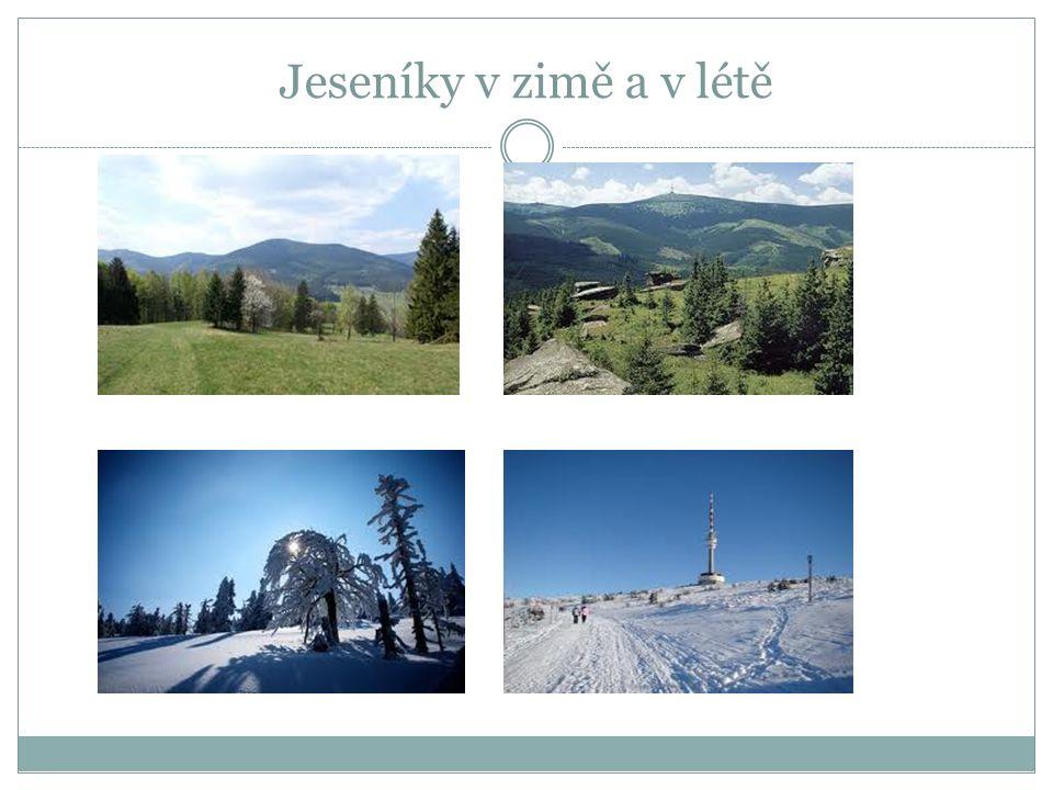 JESENÍKY Na severu Moravy se rozkládá pohoří Hrubý Jeseník a Nízký Jeseník. Nejvyšším vrcholem Jeseníků je Praděd. Praděd je po Sněžce druhou nejvyšší