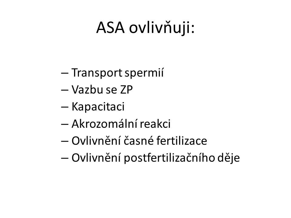 ASA ovlivňuji: – Transport spermií – Vazbu se ZP – Kapacitaci – Akrozomální reakci – Ovlivnění časné fertilizace – Ovlivnění postfertilizačního děje