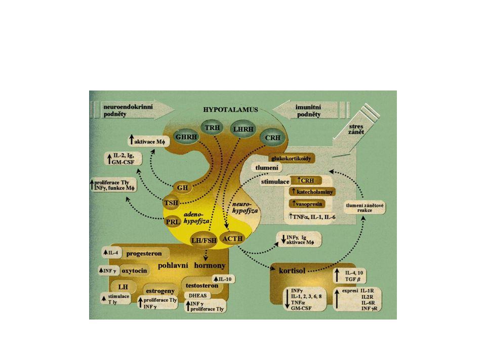 """FERTILITA a RI biologické stárnutí osy: hypotalamicko- pituitární-ovariální axis u """"starých žen hlavně v IVF →změny: endokrinologie, imunita, psyché Testy v RI s rozumem"""