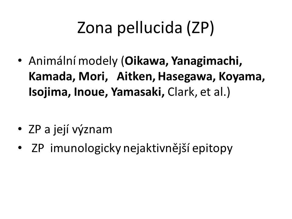 Zona pellucida (ZP) Animální modely (Oikawa, Yanagimachi, Kamada, Mori, Aitken, Hasegawa, Koyama, Isojima, Inoue, Yamasaki, Clark, et al.) ZP a její v