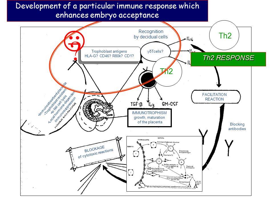 ΑΝΤΙΓΟΝΑ ΤΡΟΦΟΒΛΑΣΤΗΣ HLA-G; CD46; R80k; CD1; ΑΝΤΙΓΟΝΑ ΤΡΟΦΟΒΛΑΣΤΗΣ HLA-G; CD46; R80k; CD1; ; «ÔÇ 2 » Recognition by decidual cells Trophoblast antige