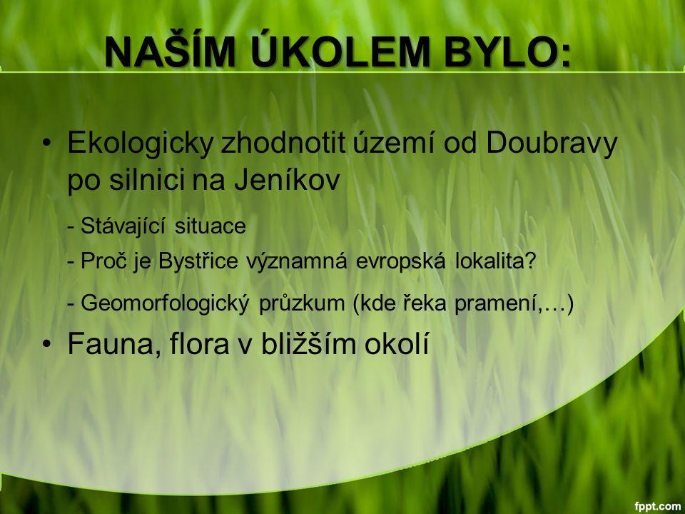 NAŠÍM ÚKOLEM BYLO: Ekologicky zhodnotit území od Doubravy po silnici na Jeníkov - Stávající situace - Proč je Bystřice významná evropská lokalita.