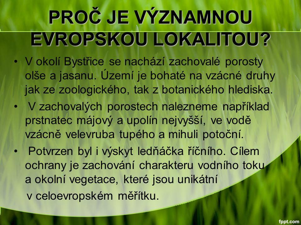 PROČ JE VÝZNAMNOU EVROPSKOU LOKALITOU. V okolí Bystřice se nachází zachovalé porosty olše a jasanu.