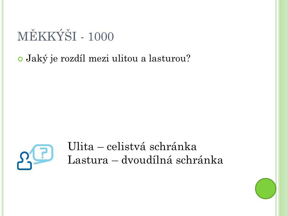 MĚKKÝŠI - 1000 Jaký je rozdíl mezi ulitou a lasturou.