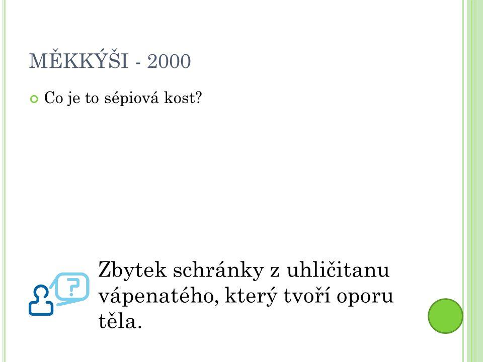 MĚKKÝŠI - 2000 Co je to sépiová kost.