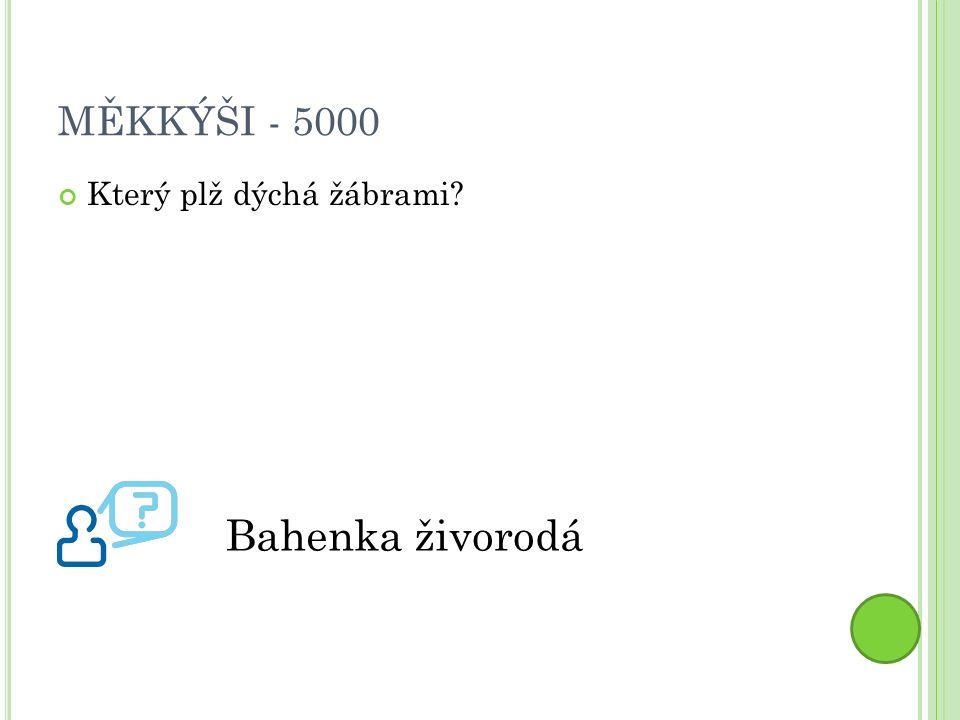 MĚKKÝŠI - 5000 Který plž dýchá žábrami Bahenka živorodá