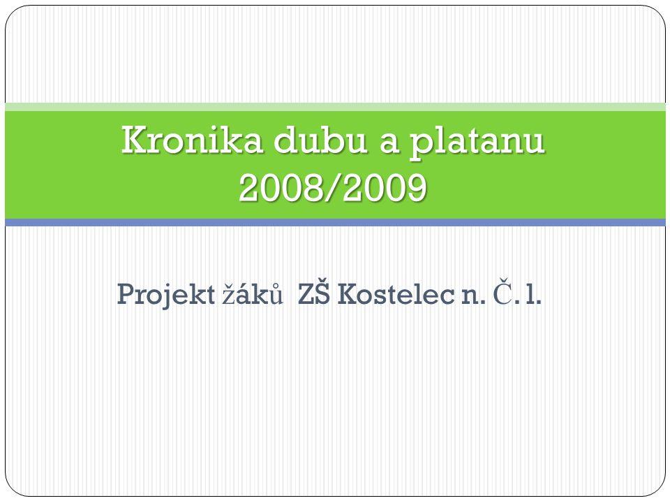 Projekt ž ák ů ZŠ Kostelec n. Č. l. Kronika dubu a platanu 2008/2009