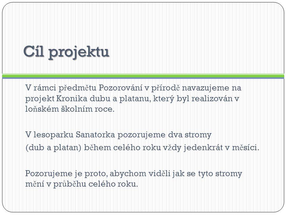 Cíl projektu V rámci p ř edm ě tu Pozorování v p ř írod ě navazujeme na projekt Kronika dubu a platanu, který byl realizován v lo ň ském školním roce.