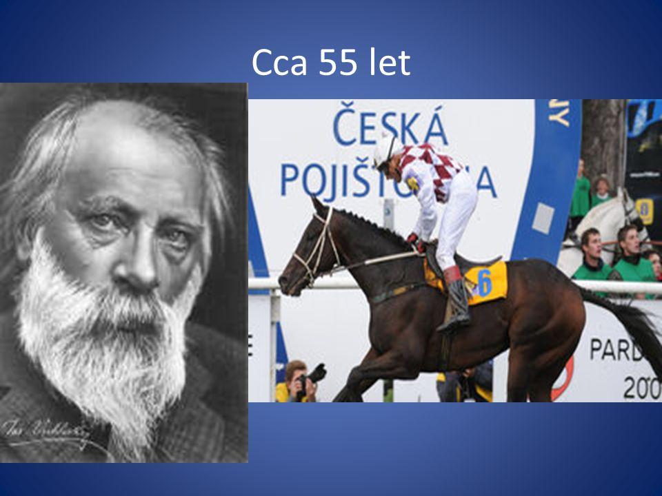 Cca 55 let