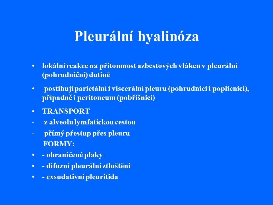 Pleurální hyalinóza lokální reakce na přítomnost azbestových vláken v pleurální (pohrudniční) dutině postihují parietální i viscerální pleuru (pohrudnici i poplicnici), případně i peritoneum (pobřišnici) TRANSPORT - z alveolu lymfatickou cestou - přímý přestup přes pleuru FORMY: - ohraničené plaky - difuzní pleurální ztluštění - exsudativní pleuritida