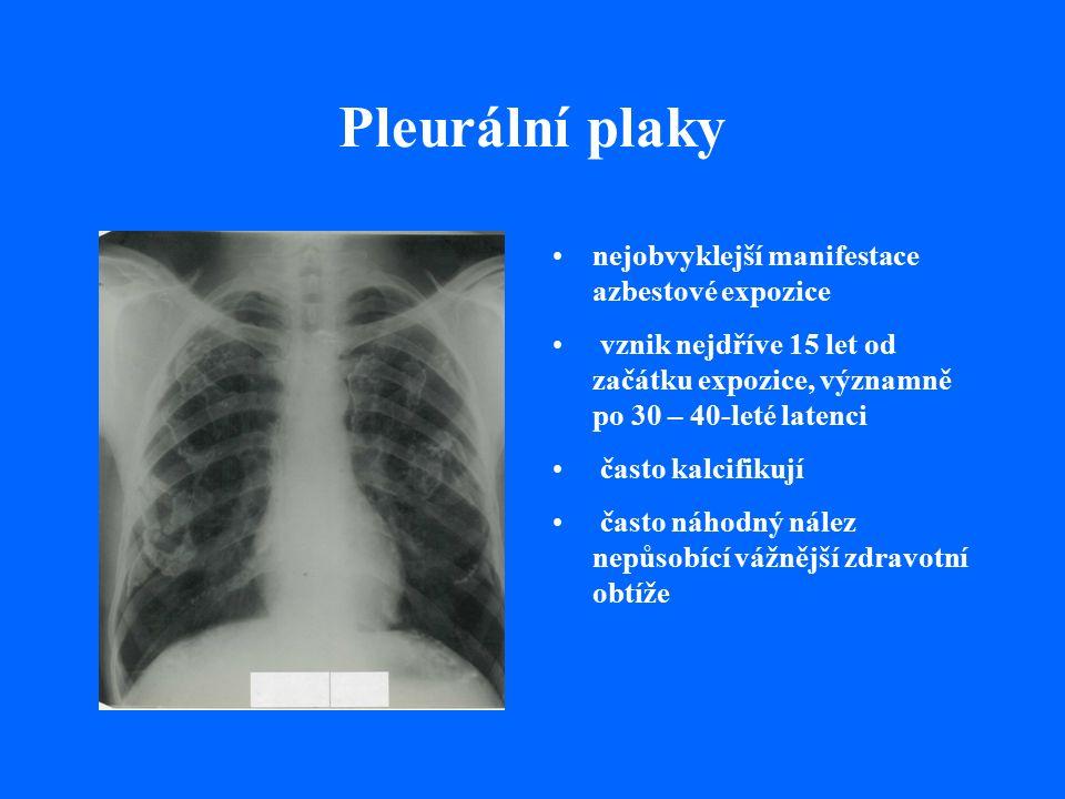 Pleurální plaky nejobvyklejší manifestace azbestové expozice vznik nejdříve 15 let od začátku expozice, významně po 30 – 40-leté latenci často kalcifikují často náhodný nález nepůsobící vážnější zdravotní obtíže