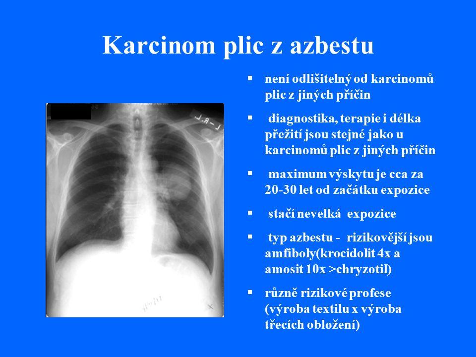 Karcinom plic z azbestu  není odlišitelný od karcinomů plic z jiných příčin  diagnostika, terapie i délka přežití jsou stejné jako u karcinomů plic z jiných příčin  maximum výskytu je cca za 20-30 let od začátku expozice  stačí nevelká expozice  typ azbestu - rizikovější jsou amfiboly(krocidolit 4x a amosit 10x >chryzotil)  různě rizikové profese (výroba textilu x výroba třecích obložení)
